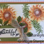 Painted Harvest stamp set